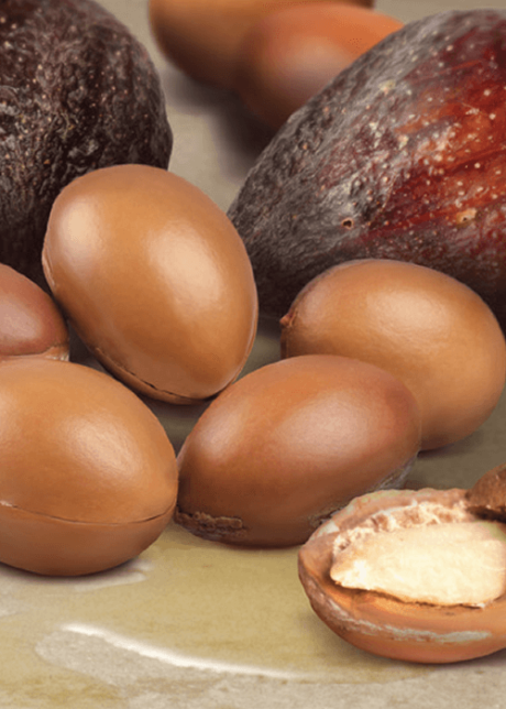 Aceite de Macadamia Sedeca de Honduras (1)