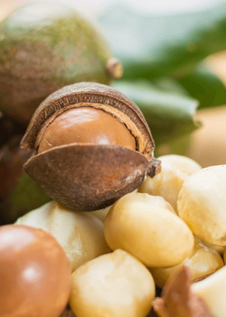 Aceite de Macadamia Sedeca de Honduras (3)