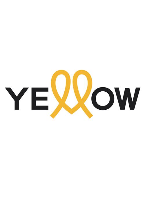 Yellow Professional Logo Sedeca de Honduras