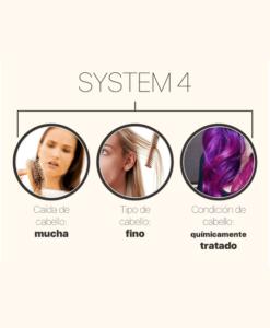 Nioxin System 4 Sedeca de Honduras